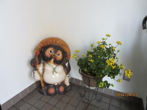 4年ぶり日本での春、少しホッです_b0100062_2395620.jpg