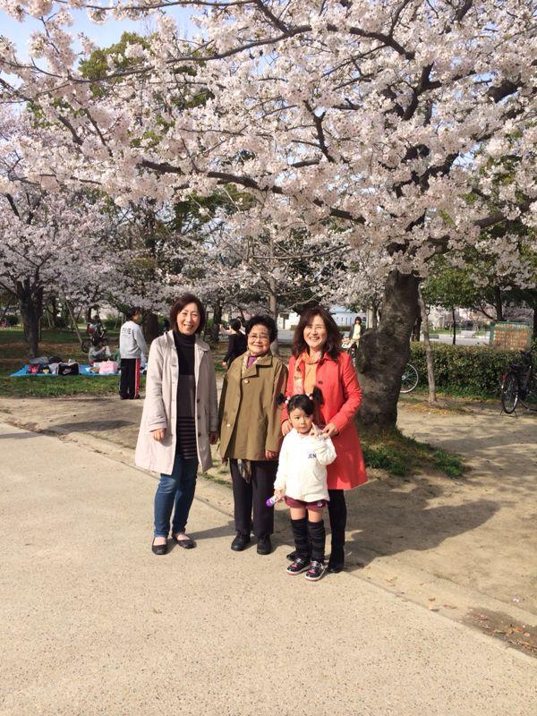桜🌸3_e0233674_1752546.jpg