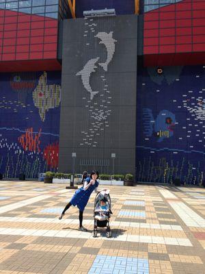 念願の海遊館!_a0188798_1333126.jpg