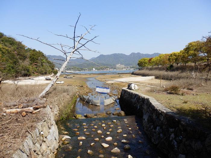 宮島 岩船岳(466.6m)_f0219710_16435655.jpg