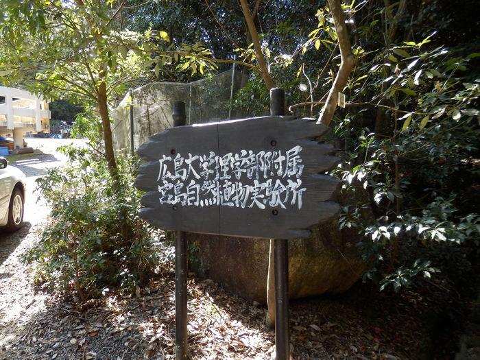 宮島 岩船岳(466.6m)_f0219710_16455378.jpg