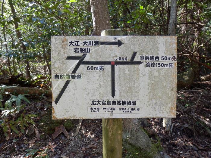 宮島 岩船岳(466.6m)_f0219710_1646265.jpg