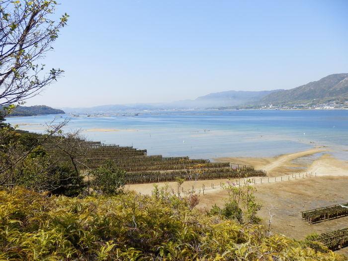 宮島 岩船岳(466.6m)_f0219710_1652897.jpg