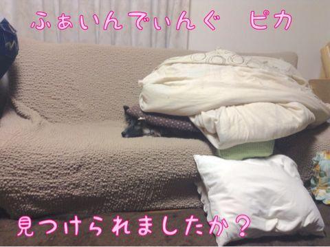 f0329311_11362719.jpg