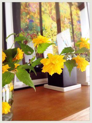 春の花_c0227612_76941.jpg