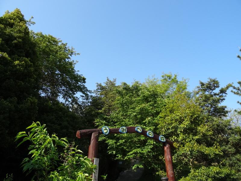 多奈川小学校1・2年生遠足サポート   in  うみべの森_c0108460_16330926.jpg