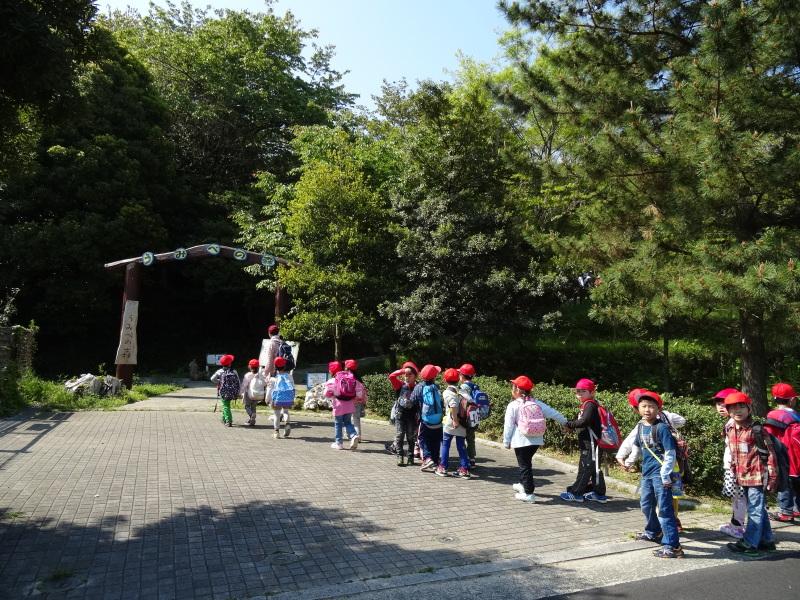 多奈川小学校1・2年生遠足サポート   in  うみべの森_c0108460_16331138.jpg