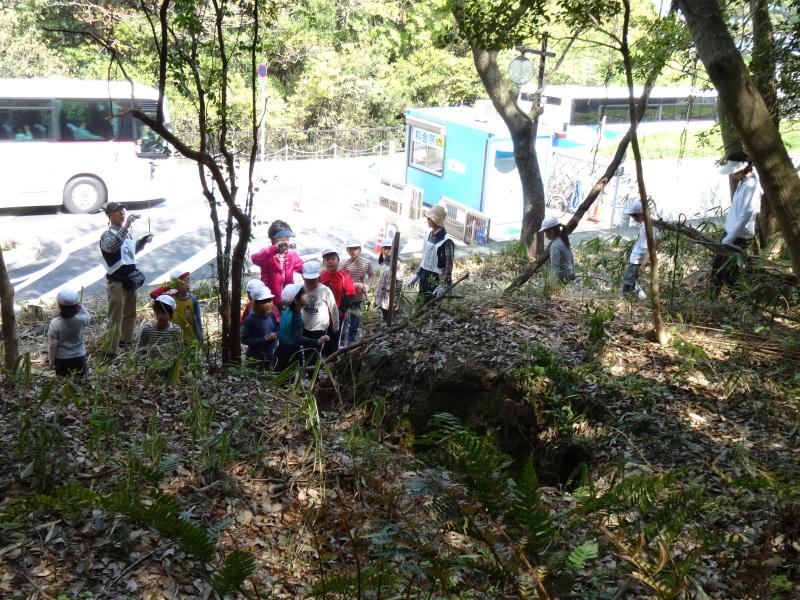 多奈川小学校1・2年生遠足サポート   in  うみべの森_c0108460_16392080.jpg