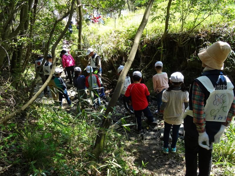 多奈川小学校1・2年生遠足サポート   in  うみべの森_c0108460_16392174.jpg