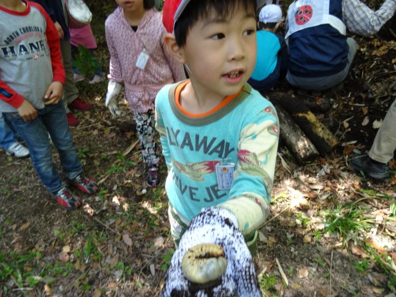 多奈川小学校1・2年生遠足サポート   in  うみべの森_c0108460_16511498.jpg