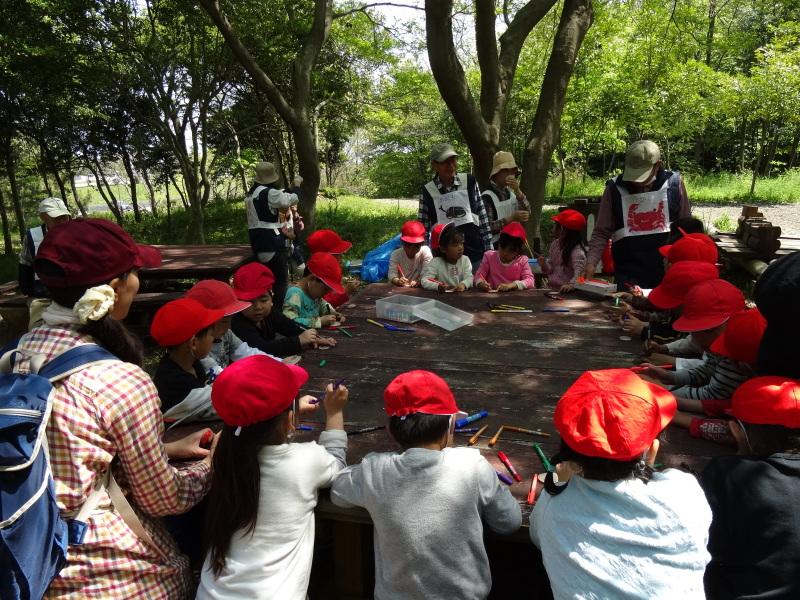 多奈川小学校1・2年生遠足サポート   in  うみべの森_c0108460_16511631.jpg