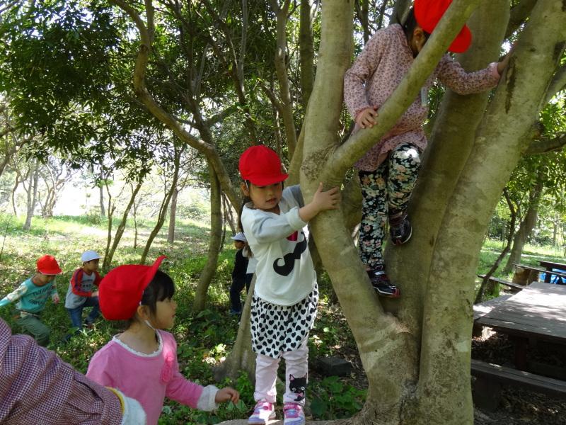 多奈川小学校1・2年生遠足サポート   in  うみべの森_c0108460_16553935.jpg