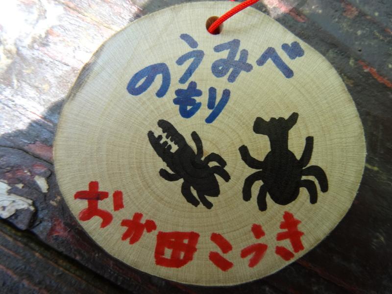 多奈川小学校1・2年生遠足サポート   in  うみべの森_c0108460_16554408.jpg