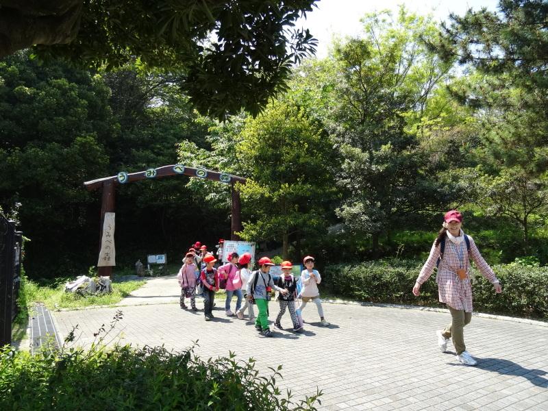 多奈川小学校1・2年生遠足サポート   in  うみべの森_c0108460_16574673.jpg