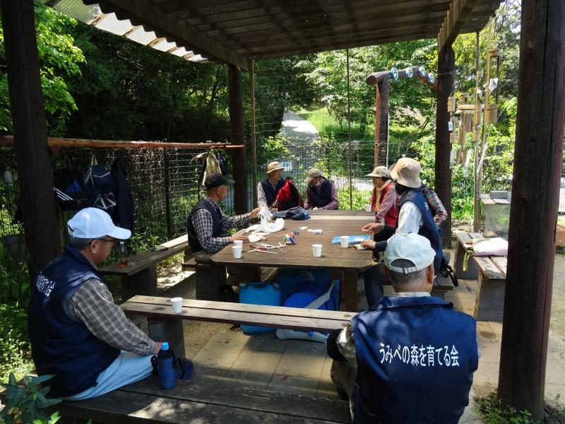多奈川小学校1・2年生遠足サポート   in  うみべの森_c0108460_16574795.jpg
