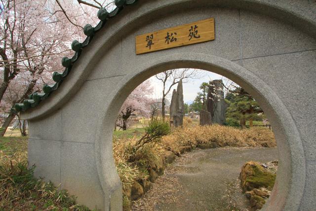 漢学の里の桜_a0267861_20294685.jpg