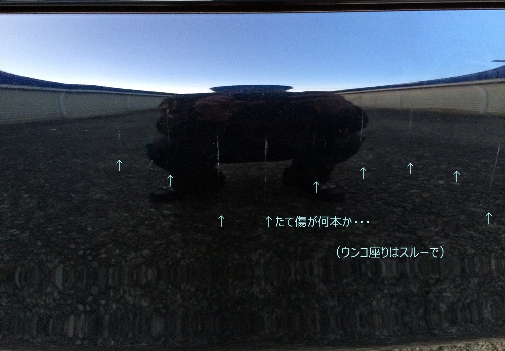 f0208465_21572175.jpg