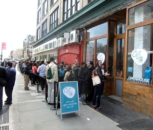 NY初の猫カフェ(Purina One Cat Café)に行ってきました #CatCafe_b0007805_13513069.jpg
