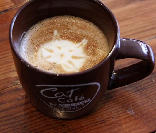 NY初の猫カフェ(Purina One Cat Café)に行ってきました #CatCafe_b0007805_13514156.jpg