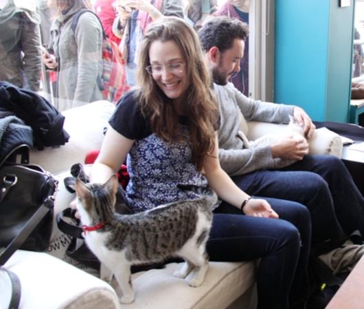 NY初の猫カフェ(Purina One Cat Café)に行ってきました #CatCafe_b0007805_2015496.jpg