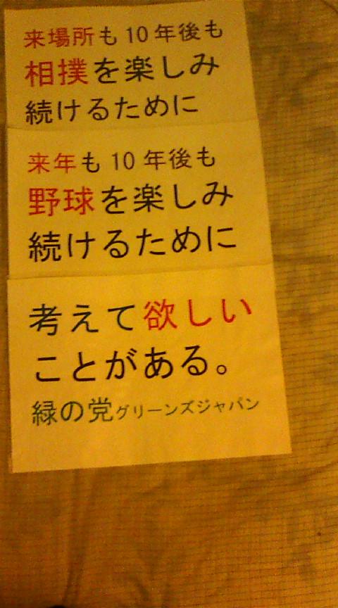 【相撲や野球を楽しみ続けるための持続可能性・参加民主主義】_e0094315_19225053.jpg