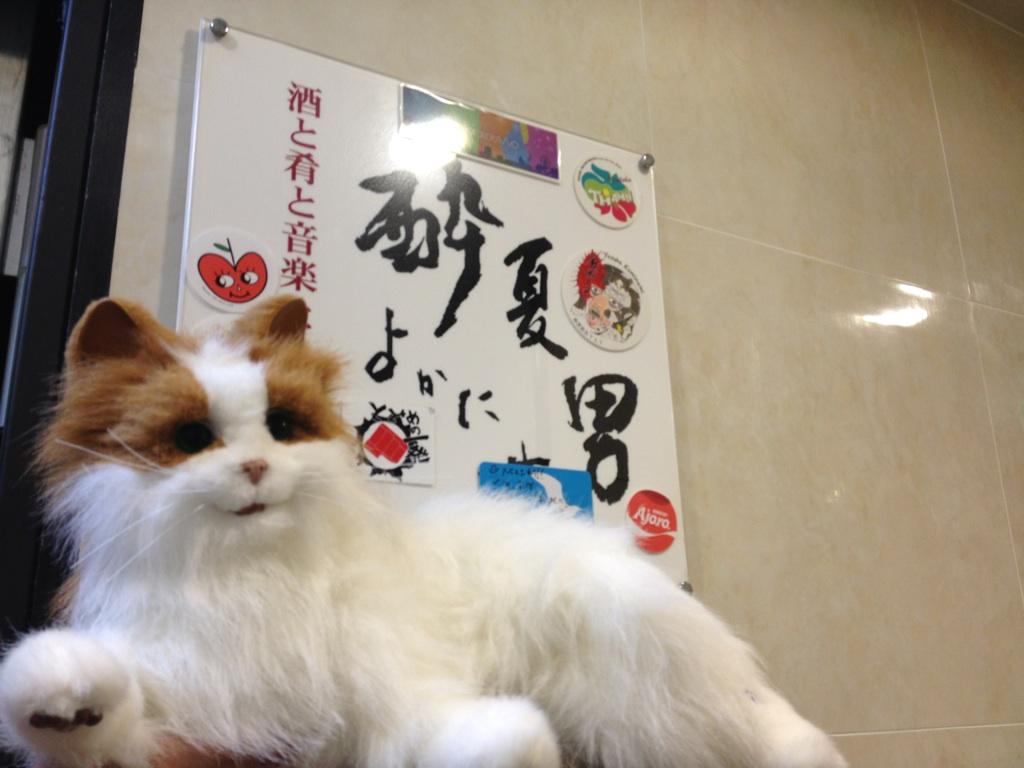mt 2nd tour 酔夏男_f0181924_131892.jpg