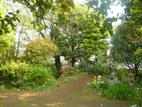 パテ屋の庭先から_f0206733_14384982.jpg