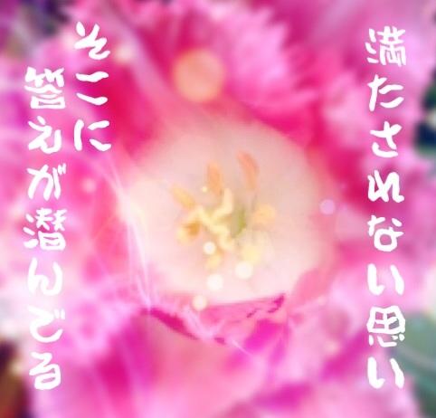 f0183846_16561614.jpg