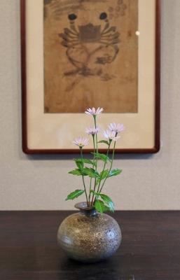 花だより ミヤコワスレ_a0279848_14433562.jpg