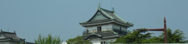 和歌山日赤へお見舞いに_c0108460_17221350.jpg