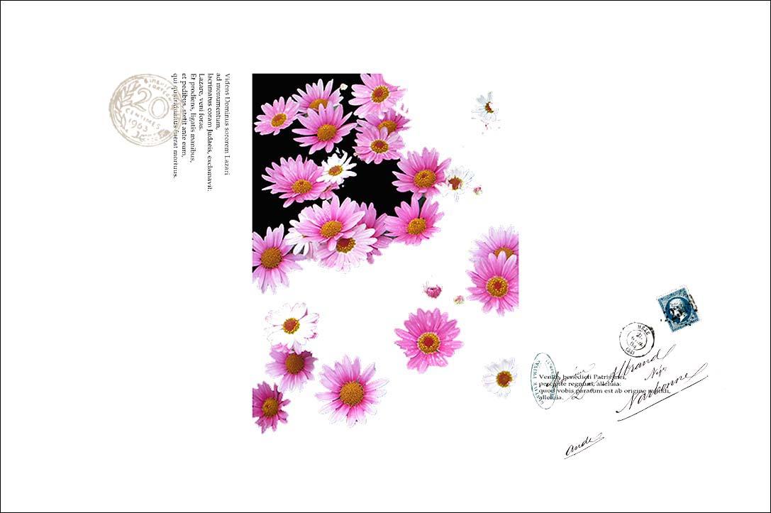 f0198771_23591192.jpg