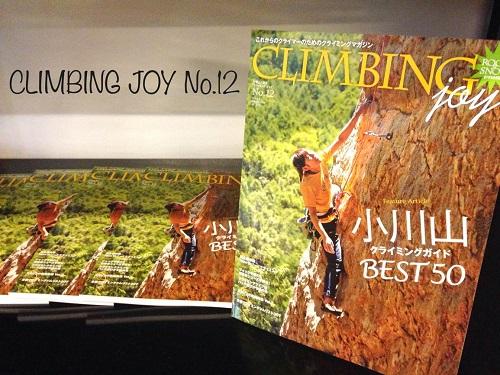 climbing joy No.12 & ホールドチェンジのお知らせ_d0246875_16235664.jpg