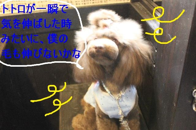好評♪_b0130018_2247101.jpg