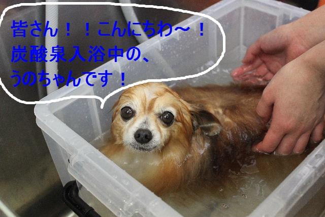 好評♪_b0130018_22502118.jpg