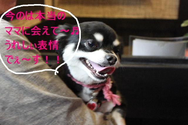 好評♪_b0130018_2323368.jpg