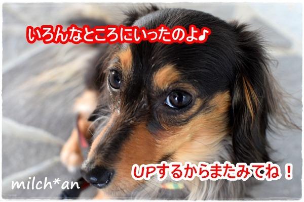 b0115642_2205448.jpg