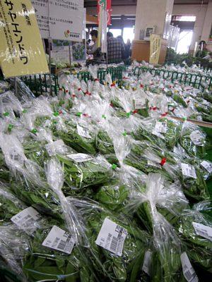 おすすめ野菜_c0141652_18175559.jpg