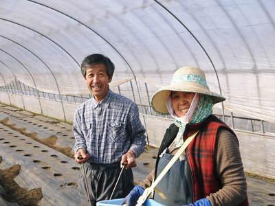 リンゴの花と株式会社旬援隊の敷地内の様子_a0254656_19481453.jpg