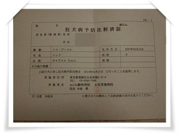 c0135363_2361327.jpg