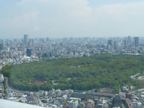 ニューヨーク グリル&バー @PARK HYATT TOKYO_c0100865_08350410.jpg