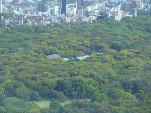 ニューヨーク グリル&バー @PARK HYATT TOKYO_c0100865_08514709.jpg