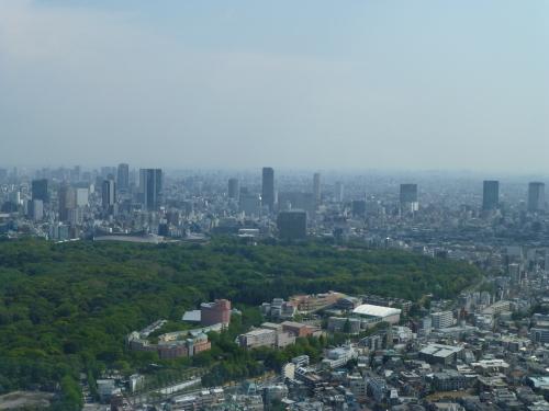 ニューヨーク グリル&バー @PARK HYATT TOKYO_c0100865_08543796.jpg
