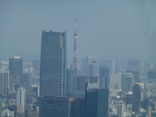 ニューヨーク グリル&バー @PARK HYATT TOKYO_c0100865_08574560.jpg