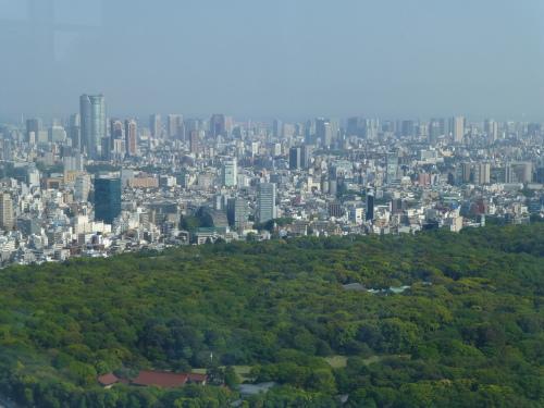ニューヨーク グリル&バー @PARK HYATT TOKYO_c0100865_09160900.jpg