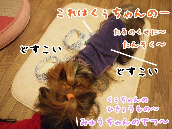 e0248268_15345418.jpg