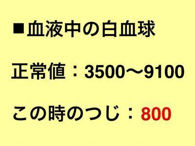 f0308281_13323660.jpg