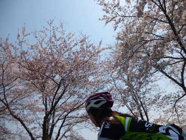 4/27(日)東御のワイナリーツーリング_b0217782_20125941.jpg