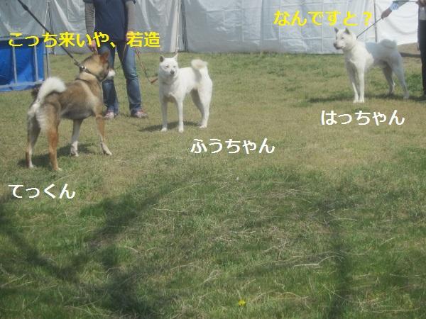 f0143123_19193302.jpg