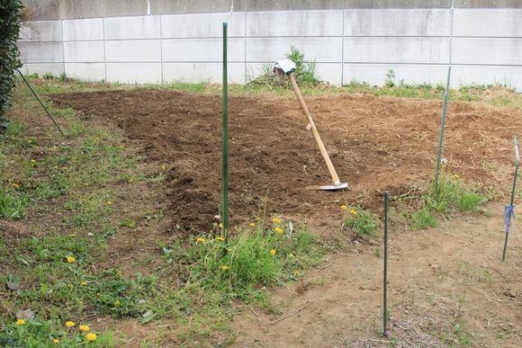 教え、教えられて、農園記念日_f0225627_13472797.jpg