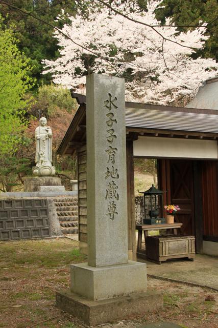 高城長禅寺の桜_a0267861_19451164.jpg